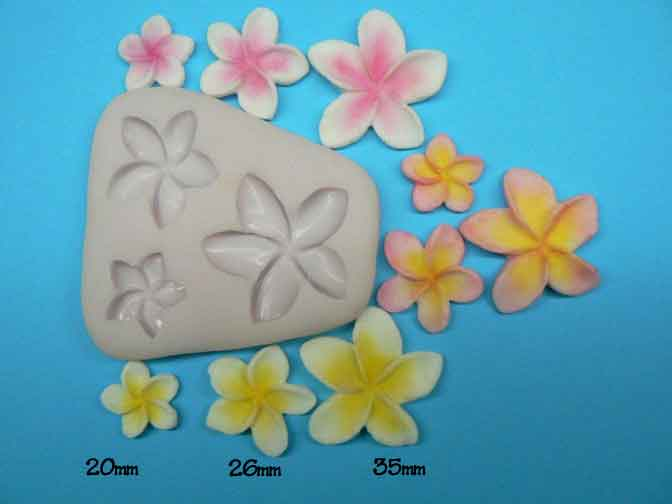 Frangipani mould - medium