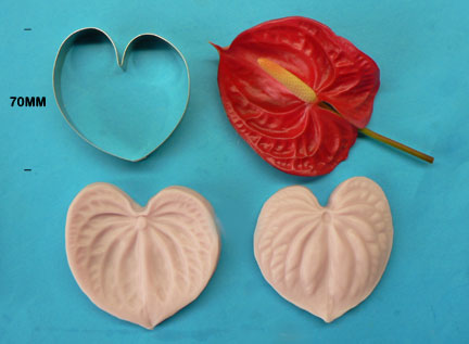 Anthurium Cutter and Veiner set - Large