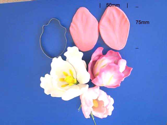 Parrot Tulip Cutter and Veiner set