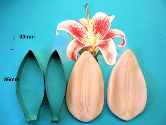 Oriental Lily Cutter and Veiner set